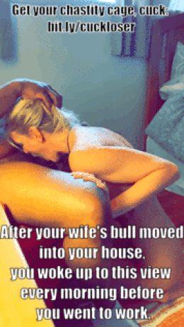 Interracial cuckold / hotwife caption